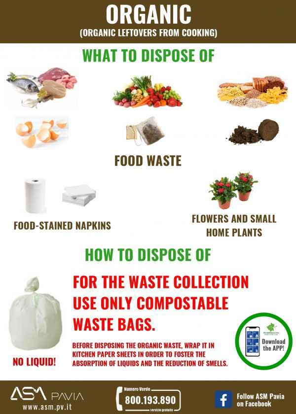 Separate waste collection: ORGANIC